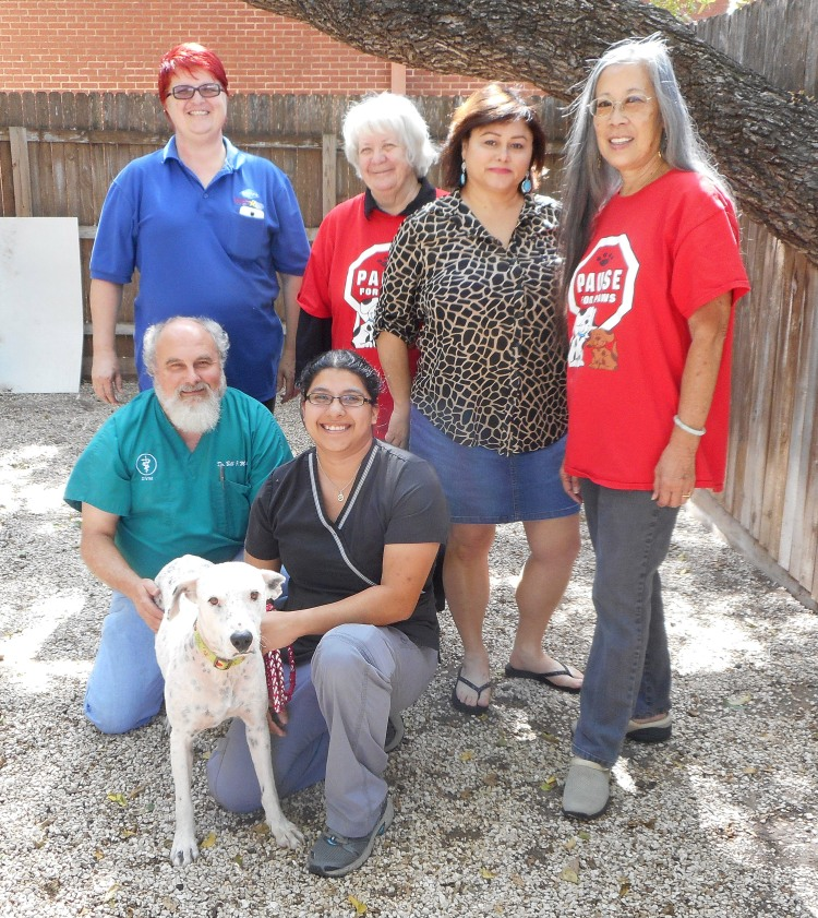 Sunshine's incredible village of rescuers. From left to right, back row: Caron Comas, Sharal Mackenzie, Elsa Benavidas and Deanna Lee from SOS-SATX; front row: Dr. Bill McGehee, Miss Caron Sunshine and Jennifer Rodriguez. Photo credit: Pause for Paws.