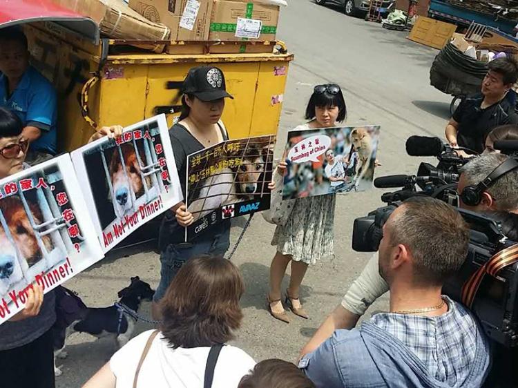 Chinese protestors-HSI